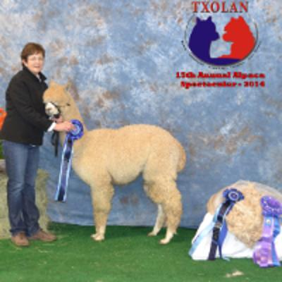 Alpaca Owners Association, Inc  - Home