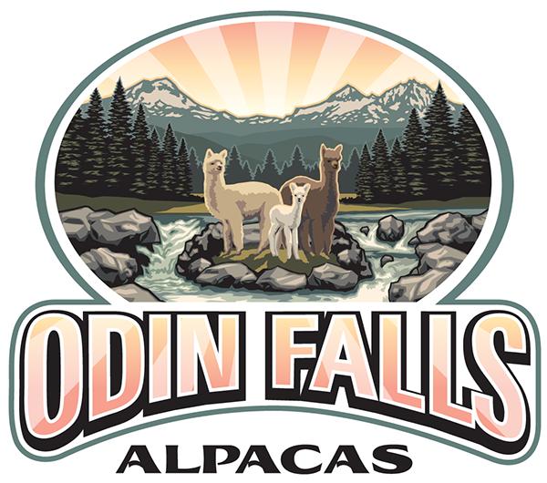 Odin Falls Alpacas