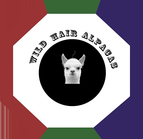 Wild Hair Alpacas LLC