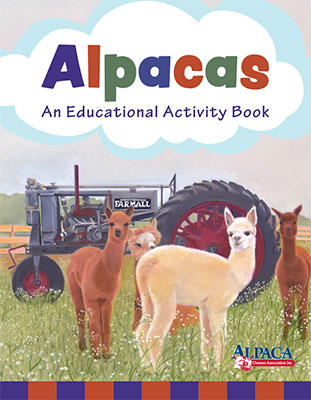 Children's Activity Book