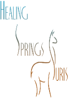 Healing Springs Suris LLC