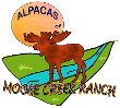 Alpacas of Moose Creek Ranch